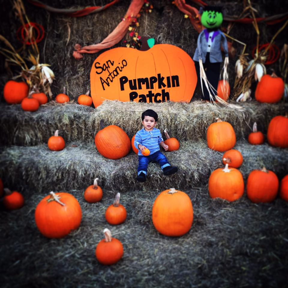 From the pumpkin patch off of Potranco and 151 by the new YMCA and Willies. Thanks for sharing Myriam Sandoval.