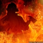 Home burns in Hixson early Tuesday morning