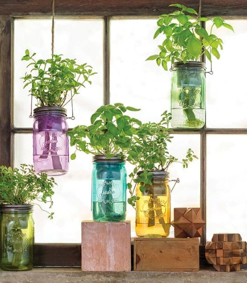 When chefs say fresh herbs make all the difference, they speak the truth. But where does that leave those of us with no garden, no time, and no green thumb? Harvest all that flavor with very little work with Sarah Burrows and Nick Behr's tinted, vintage-inspired jars. They're pure charm on the outside, but inside use a passive hydroponic system that brings nutrients up to the plants' roots while regulating moisture. There's no guesswork over whether the soil has the right amount of water. Plant the included seeds of your choice, put water in the reservoir, place the jar in a sunny window, and get growing. Assembled in the USA. $20. (Image:{ }Uncommongoods.com){ }