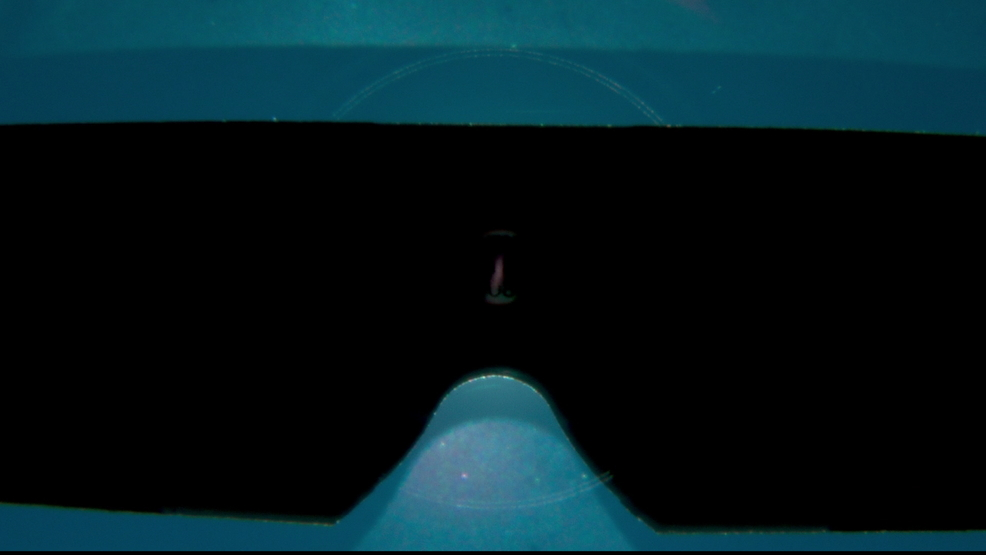 Will Your Solar Viewing Glasses Actually Protect Your Eyes