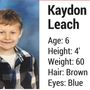 Endangered child alert issued for missing Tennessee boy