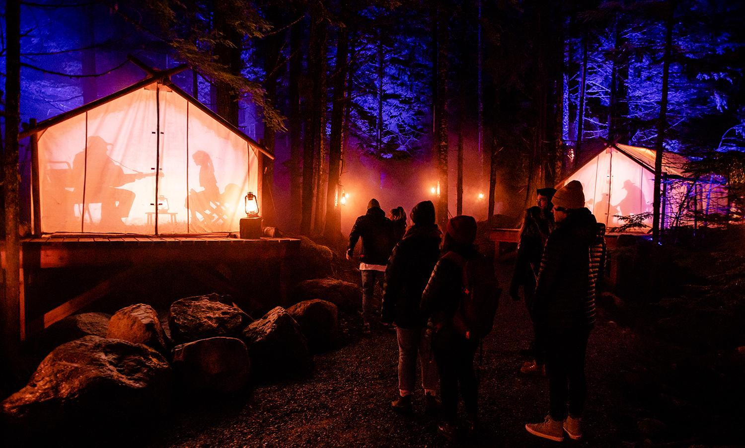 "Vallea Lumina is Whistler's newest winter Multimedia Light Walk. While its summer version is in its third year, the winter version just debuted and will be running through April 2020. The 1km walk through the woods is wondrous, and full of high tech light projections and an orchestral soundtrack that truly transports you. More info on times, and tickets{&nbsp;}<a  href=""https://vallealumina.com/"" target=""_blank"" title=""https://vallealumina.com/"">online</a>. (Image: Moment Factory)"
