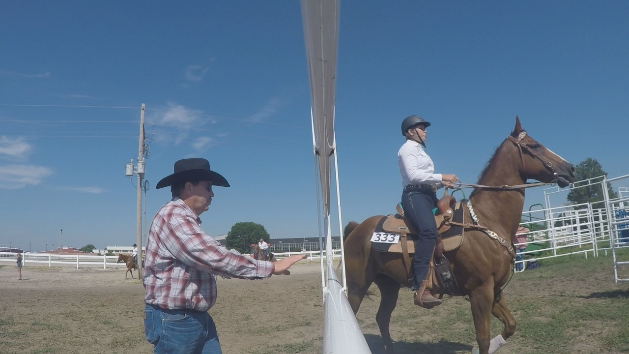 State 4-H Horse Show (NTV News)