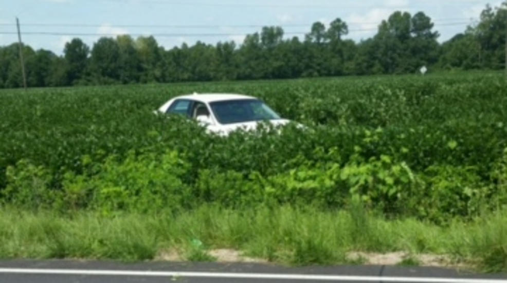 Car Wrecks Lands In Field Following Police Chase In Mullins Wpde