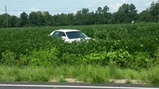 Car wrecks, lands in field following police chase in Mullins