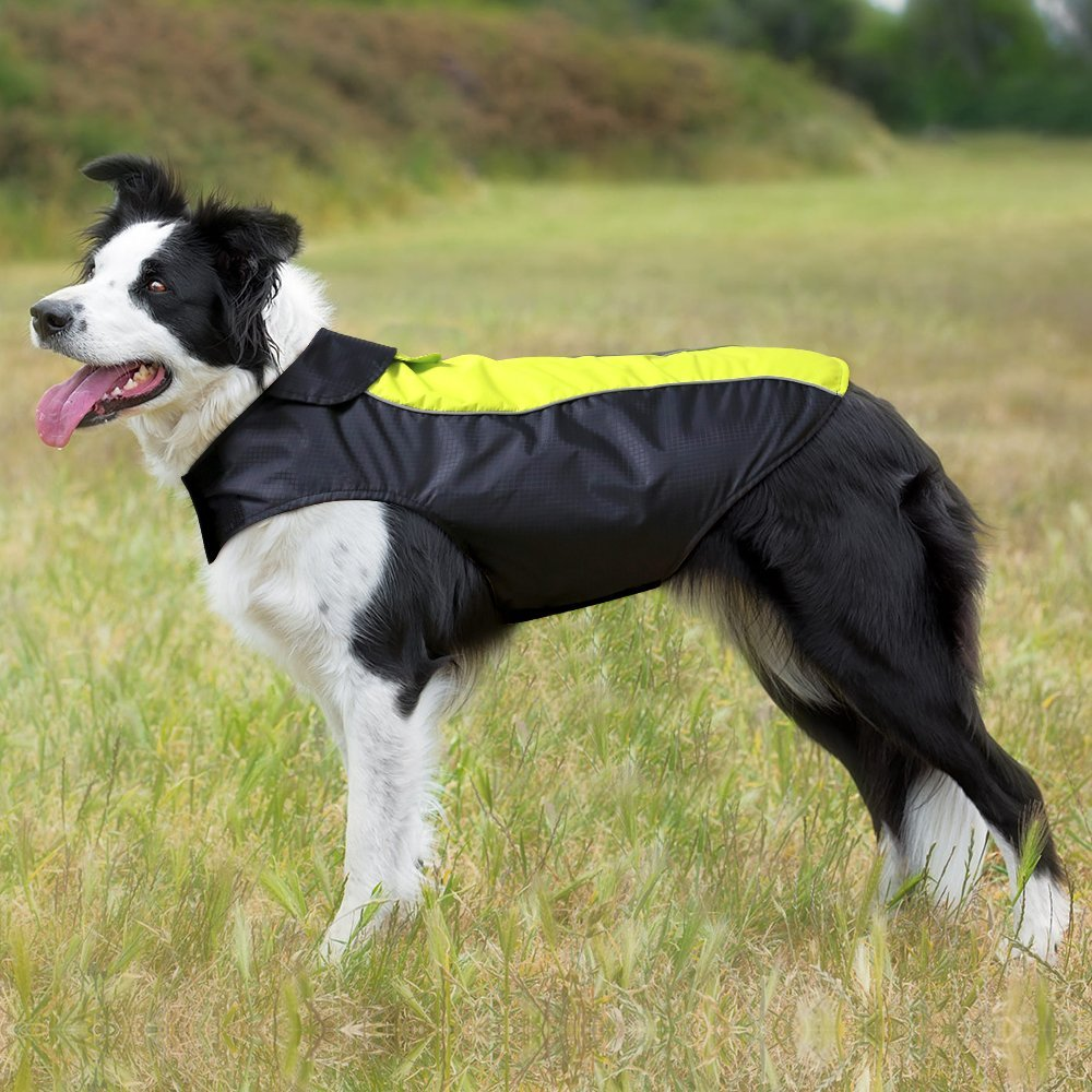 Ezer High Visibility Dog Coat - $15. This sporty  number comes in six different sizes ranging from small to extra extra EXTRA  large. The draw of this particular raincoat is its high visibility in the dark, so if you two are a fan of night walks, this one's the coat for you. (Image: Amazon)<br>