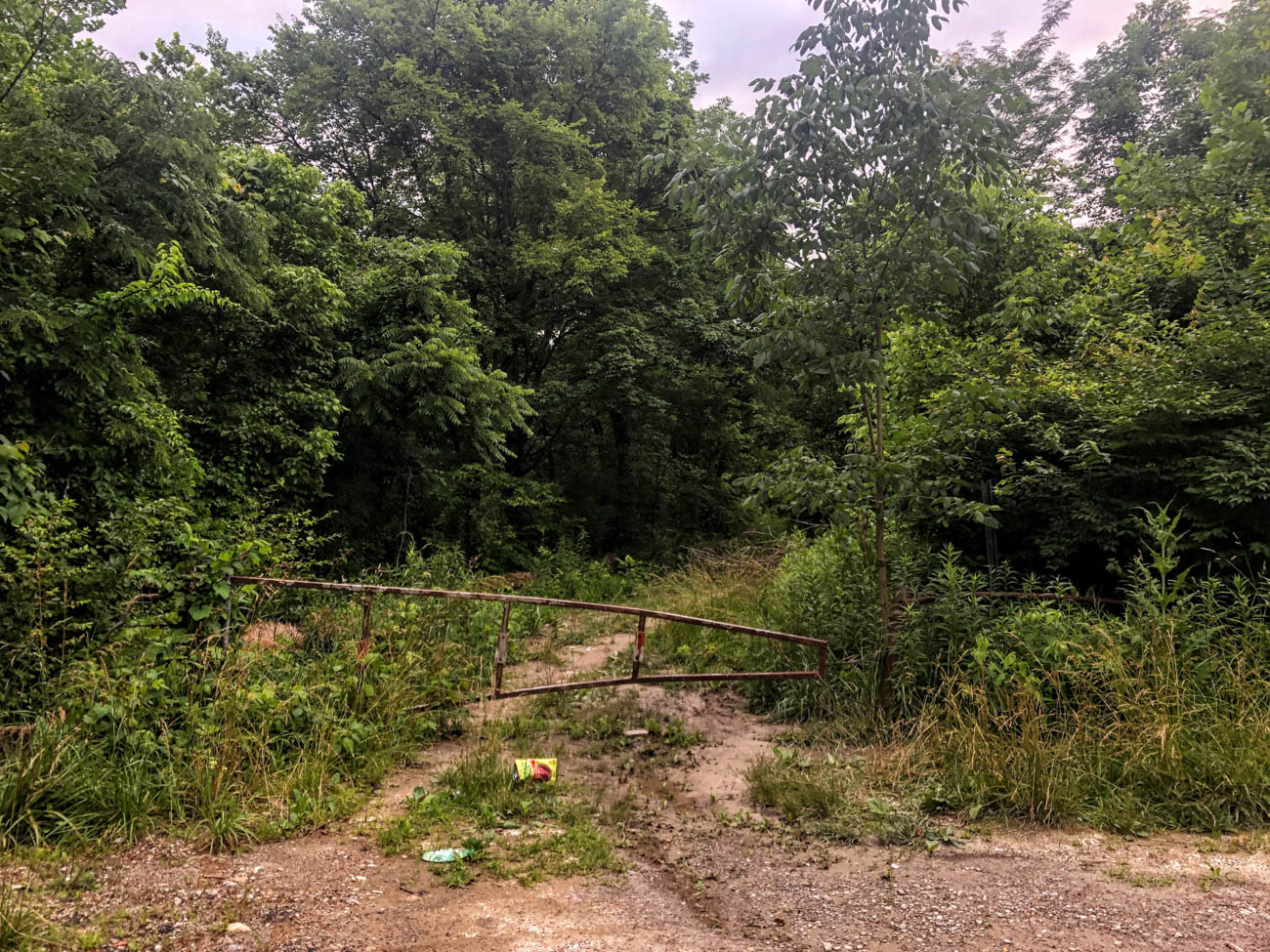 PLACE: Lick Road in Colerain Township / On the edge of the Richardson Forest Preserve off of W Kemper Road is where Lick Road resides. Its dead end is where people go to spot the ghost of Amy. The details are fuzzy, but as the legend goes, she was allegedly murdered by her boyfriend/killed by her stepfather/found dead there. If you park your car and flash your lights, honk your horn, and wait in the dark, you'll supposedly spot her ghost and hear her scream. You may even see the words 'help me' written in condensation on your windows. The legend isn't exactly straightforward, but the spot receives a 5/10 on the Spookiness Scale because the vibe is overall uneasy and distressing, especially when you see a black cat run across the road during your trip like we did. / Image: Di Minardi // Published: 7.23.19